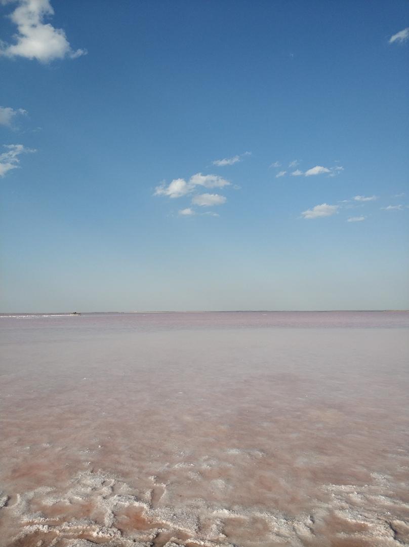 Розовое озеро в Крыму сасык сиваш фото